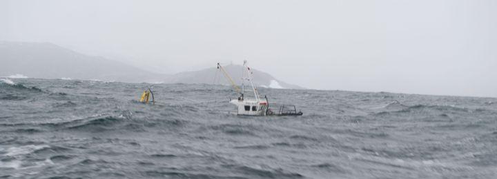 рыбалка дикарем на баренцевом море